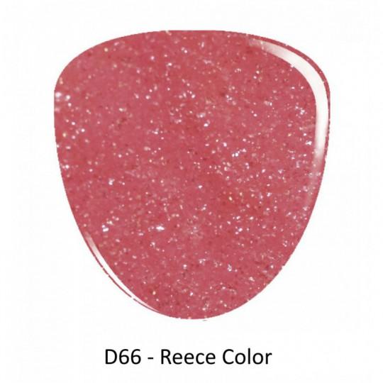 D66 Reece