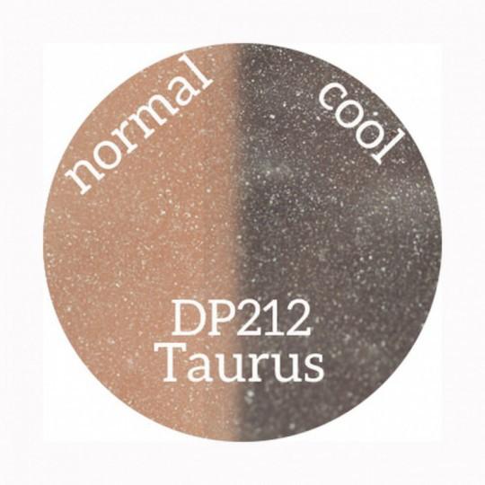 DP212 Aquila