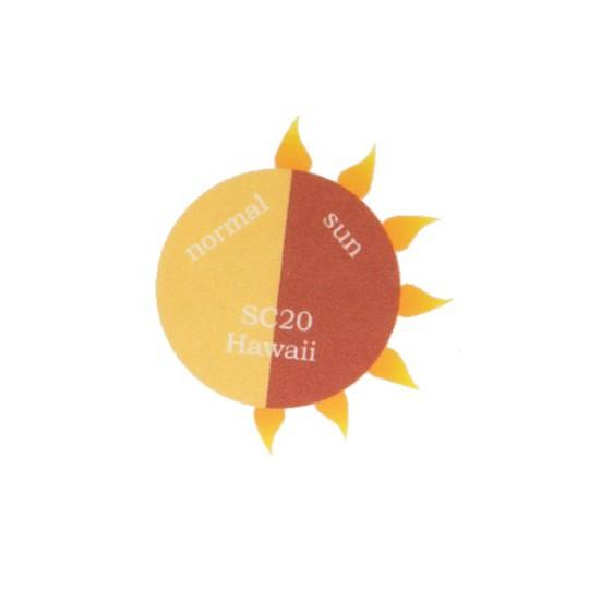 SC20 Hawaii