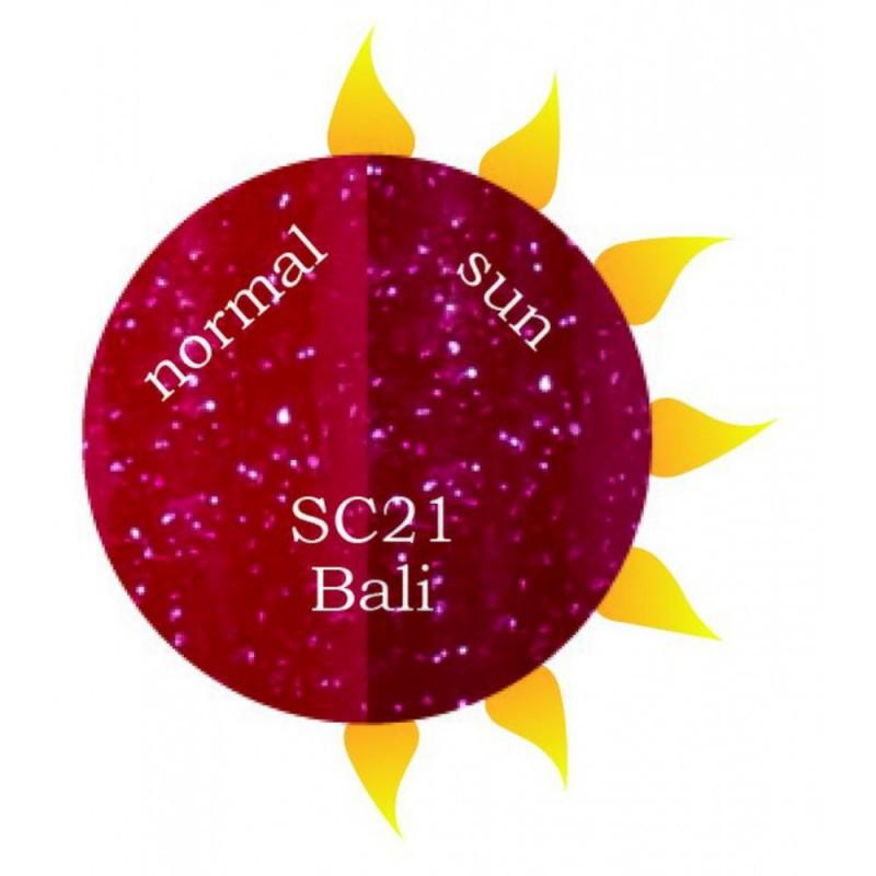 SC21 Bali