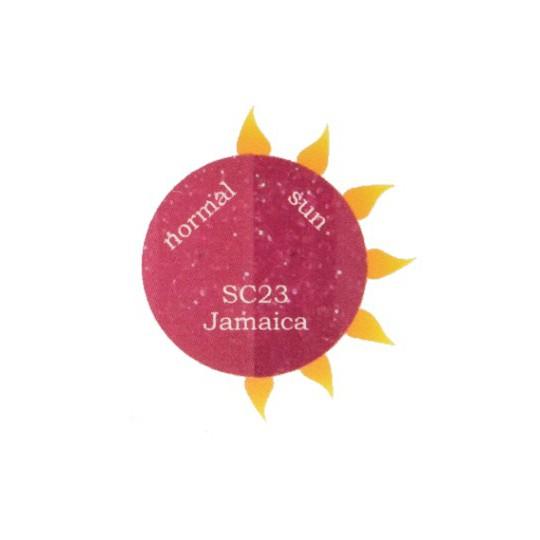 SC23 Jamaica