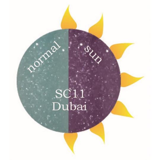 SC11 Dubai