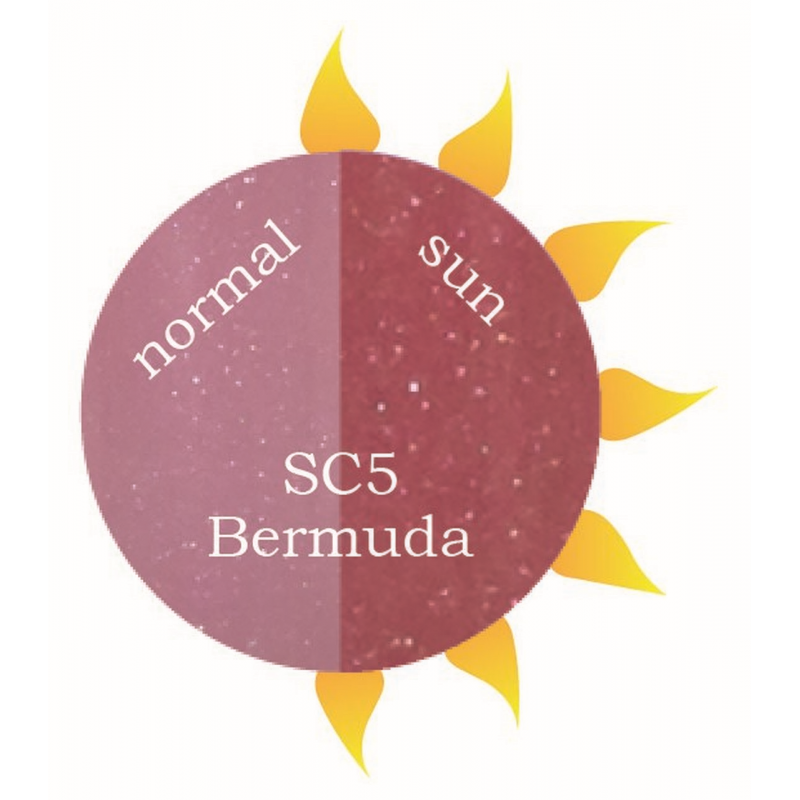 SC5 Bermuda