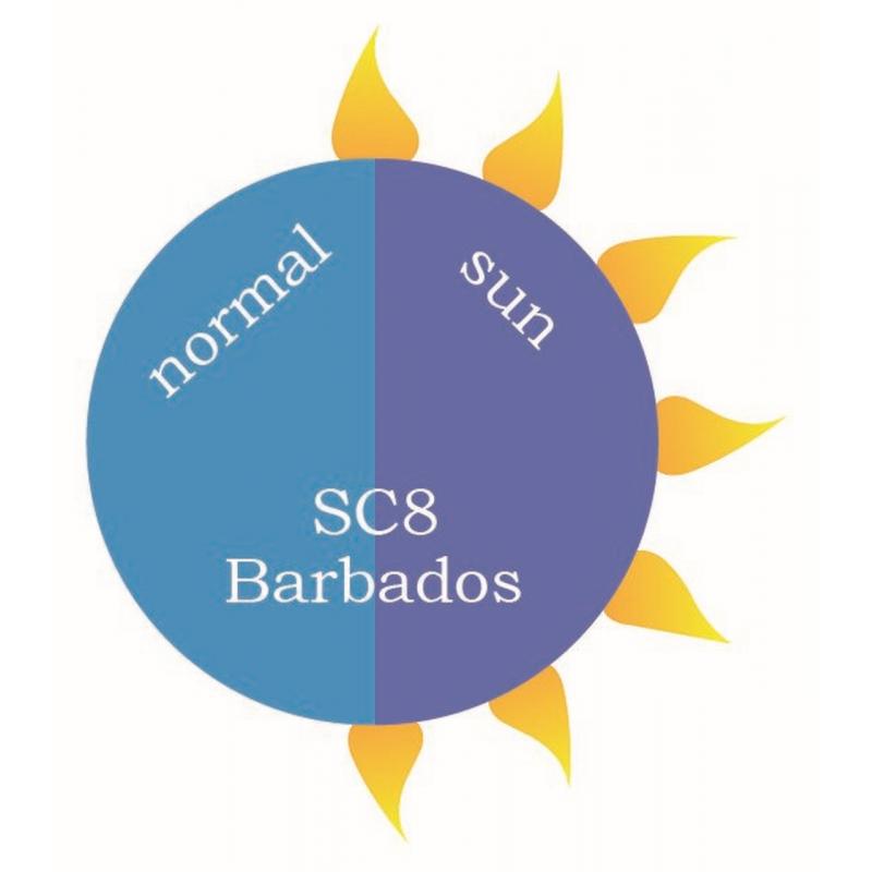 SC8 Barbados