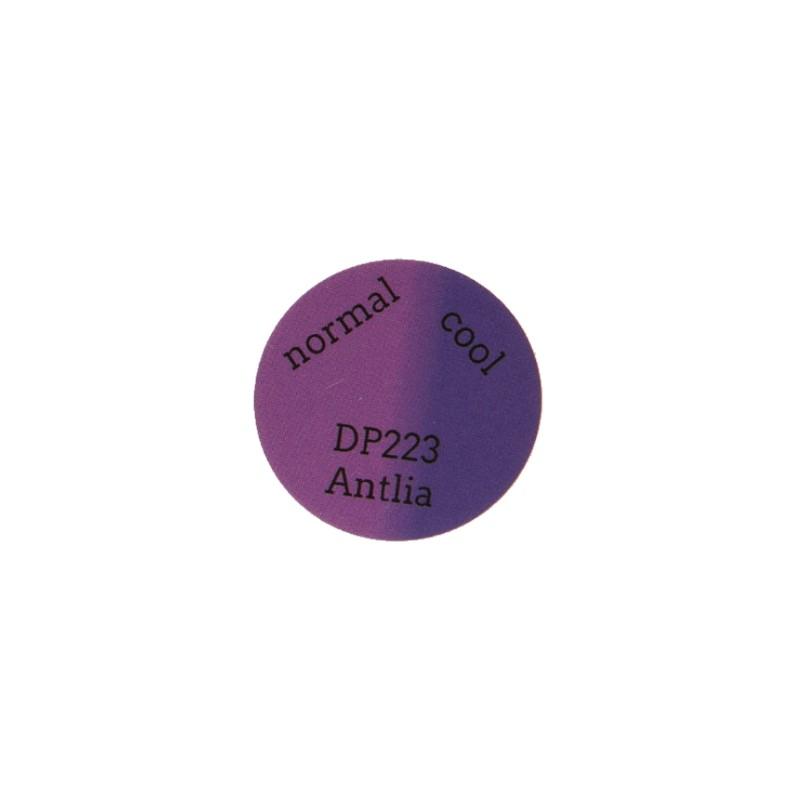 DP223 Antlia