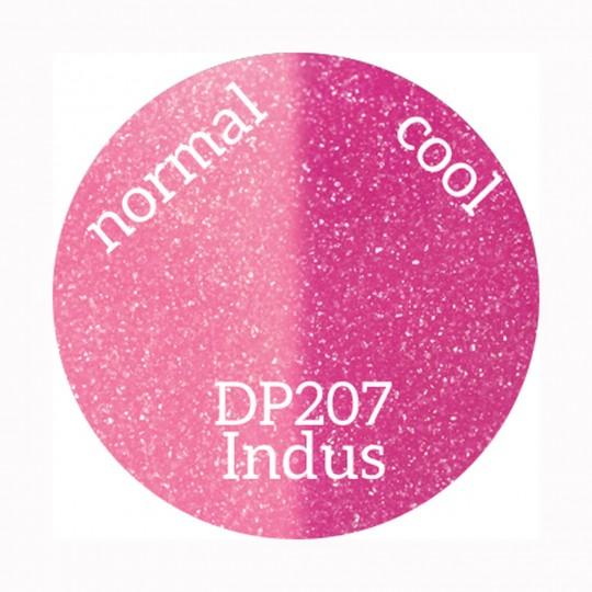 DP207 Indus