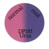 DP181 Ursa